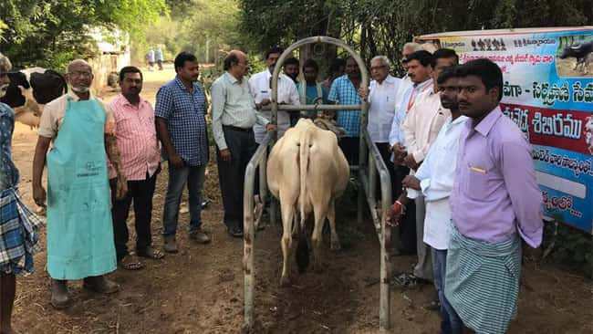 Veterinary Camp were conducted at Dhurshed