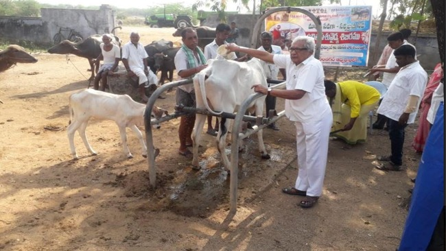 Free Camp conducted on World Veterinary Day