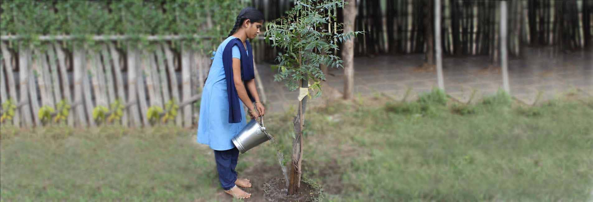 Environment Protection Planting Trees